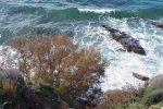 metatin okeanidaf