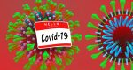 coronavirus-official-name-covid-19