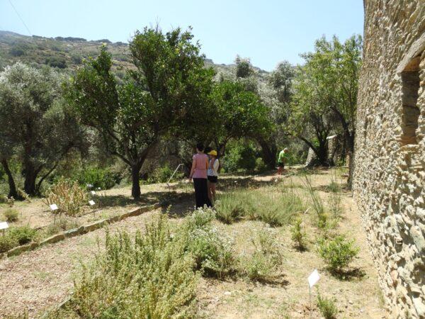 Βοτανικός κήπος και έκθεση φωτογραφίας από την Καΐρειο Βιβλιοθήκη