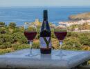 enandros wine